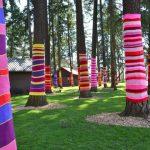 "Yarn ""bombed"" trees in Seattle"